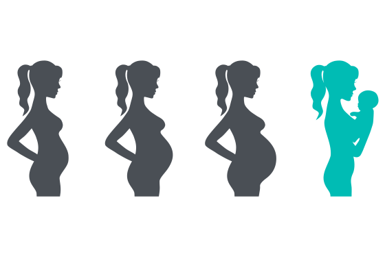 Illustration of the phases of pregnancy to birth