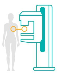 icon illustration of mammogram