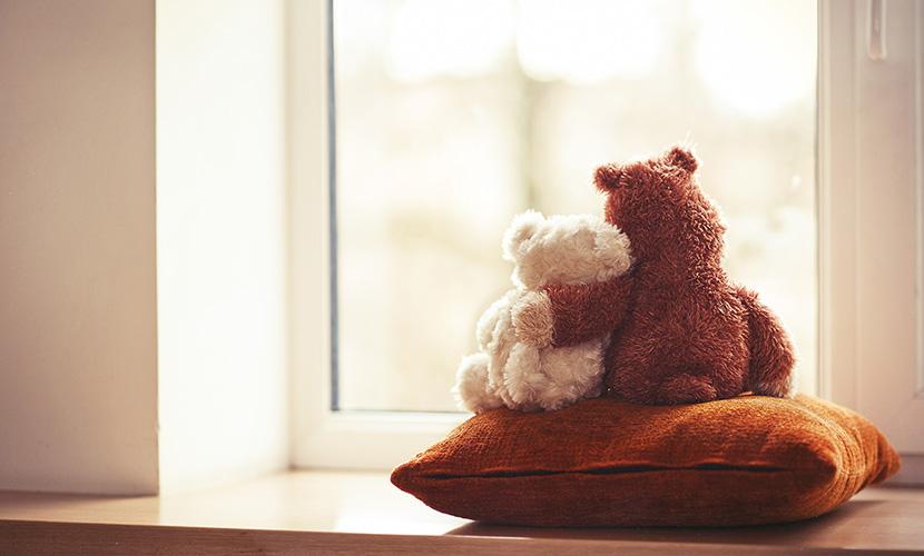 teddy bears hugging in window